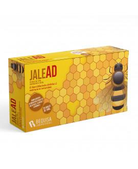 JaleAD | 20 Viales